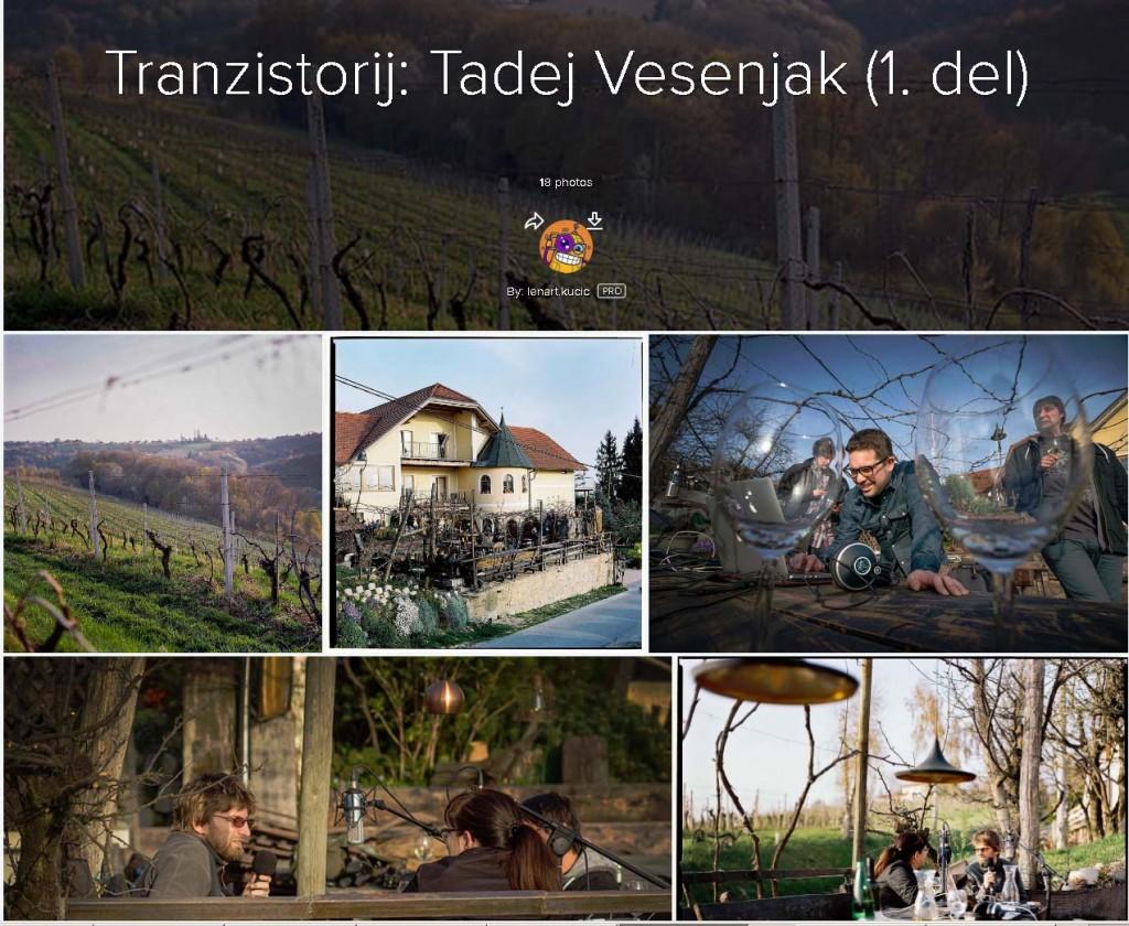 tranzistorij_vesenjak_1